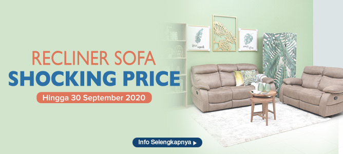 Recliner Sofa Shocking Price