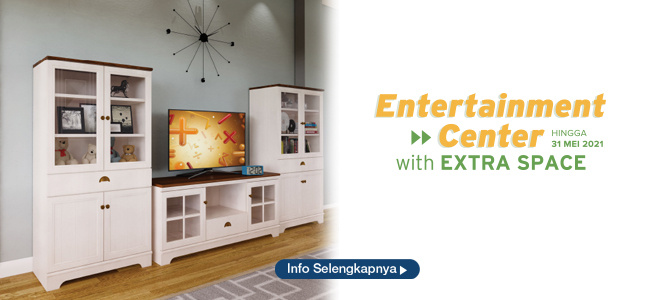 ENTERTAINMENT CENTER WITH EXTRA SPACE